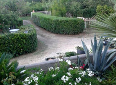 Garten, Ferienhaus Casa Lele, Capoliveri, Insel Elba