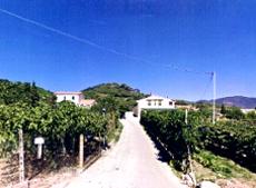 Terrasse, Ferienwohung, Winzer Pepe, Marina di Campo, Insel Elba